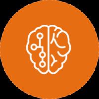 TMS Brain